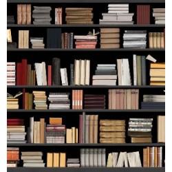 Cărțile Europei sunt acum la Editura Darclée